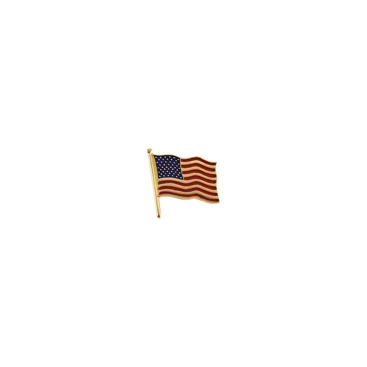 Roy Rose Jewelry 14K Yellow Gold 14.5x14mm American Flag Lapel Pin -- Click image to review more details.