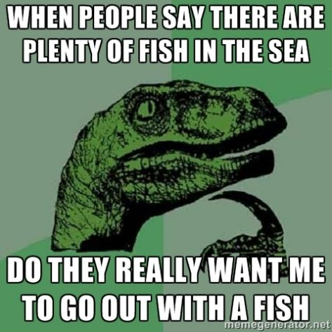 Plenty more fish in the sea dating site