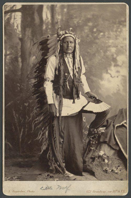 Leban Маленький Волк, племянник вождя Северных Шайенов Маленького Волка, от которого он получил своё имя. Период 1879 г.