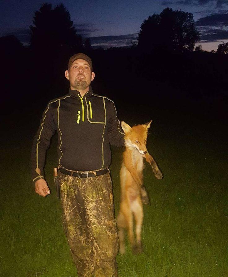 Rev nr 5 i natt. Need a new sight for wildboar hunting in Sweden last week in August☺ Anyone who wants too sponsor me��  #Jakt#jagt#jagd#hunt#hunter#hunting#huntress#ou tdoor#nature#natur#whatgetsyououtdoors #wildlife#iamsportsman#norgesjegere#jaktbilder#nordichunter#liveterbestute#norway#villmarksliv#instahunt#jeger#norgesjegere#mittjaktblad#nordi chunt#mittjegerliv#fox#foxhunting#wildboarhunting http://misstagram.com/ipost/1565964910457246935/?code=BW7bMoKh9TX