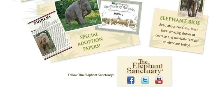 Tennessee Elephant Sanctuary