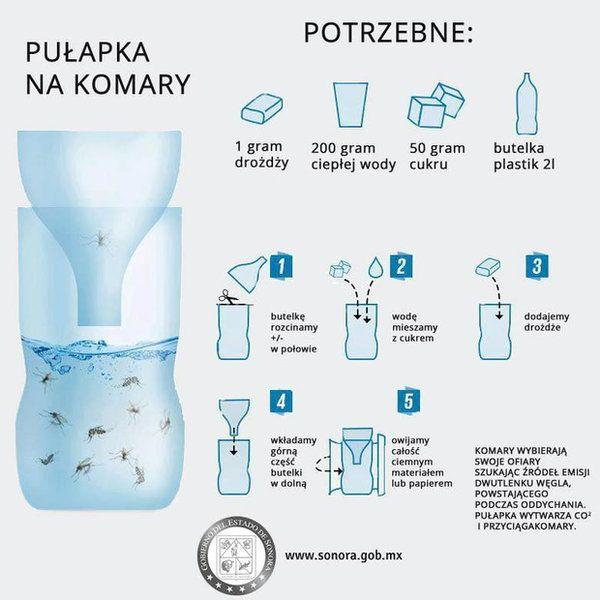 Zrób to sam: oto  naprawdę skuteczny sposób na komary