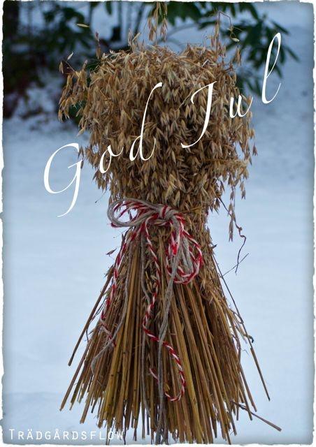 Garden Flow: Merry Christmas
