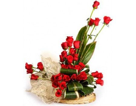 Valentine 6. 35 Red Roses arranged in a basket with lots of green foliage.