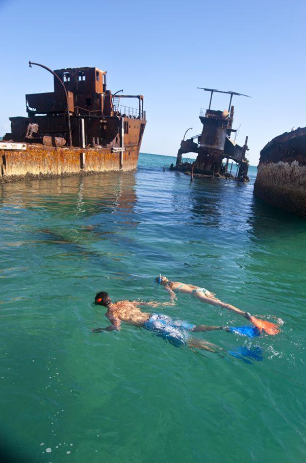 Snorkeling around Tangalooma's wrecks, Moreton Island. Queensland