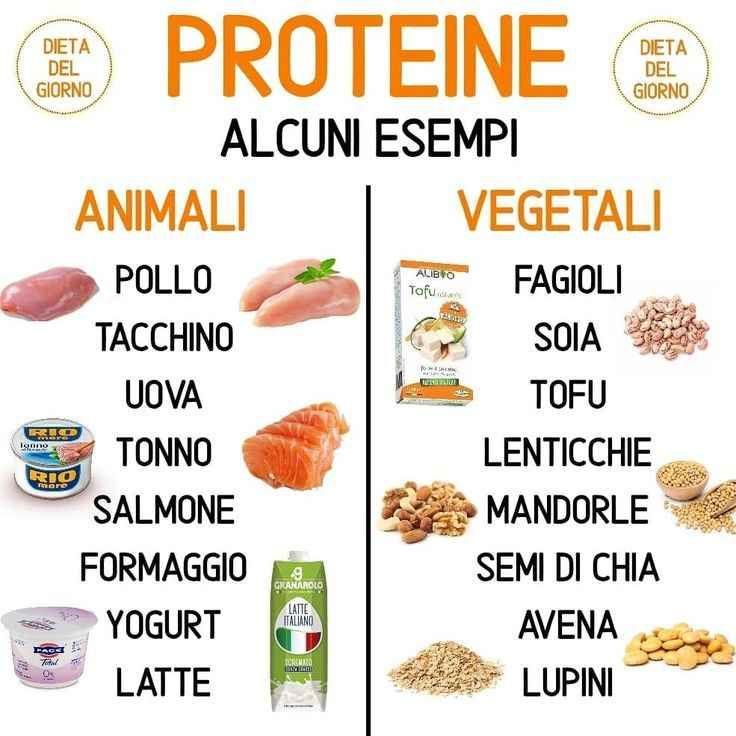 Ecco alcuni esempi di proteine animali e vegetali. . . . #dietadelgiorno #…