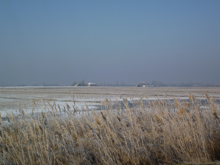 The fields in winter near Kiskunsag National Park