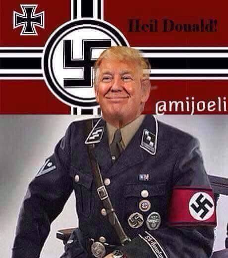Image result for Donald Trump IN NAZI UNIFORM CARTOON