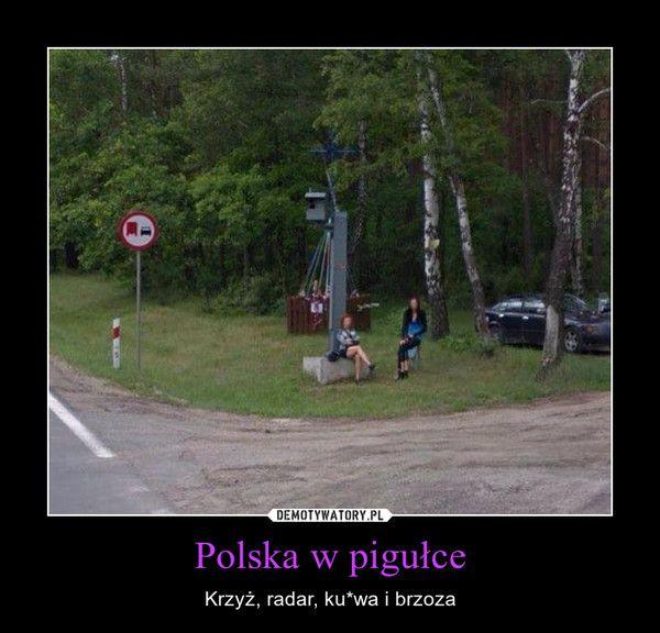 Polska w pigułce – Krzyż, radar, ku*wa i brzoza