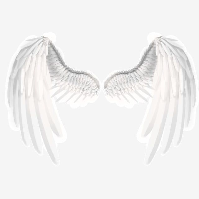 Angel Beautiful White Wings Angel Wings White Wings Wings Png Transparent Clipart Image And Psd File For Free Download Wings Png White Angel Wings Wings Wallpaper