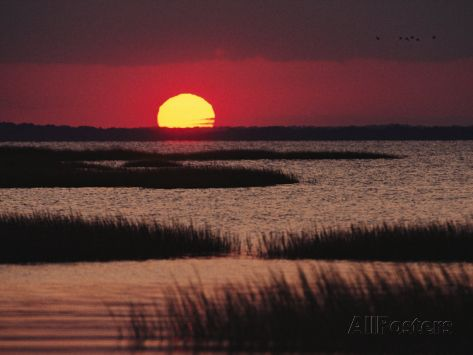 Sunset over Chincoteague Island Marsh, Virginia Photographic Print at AllPosters.com