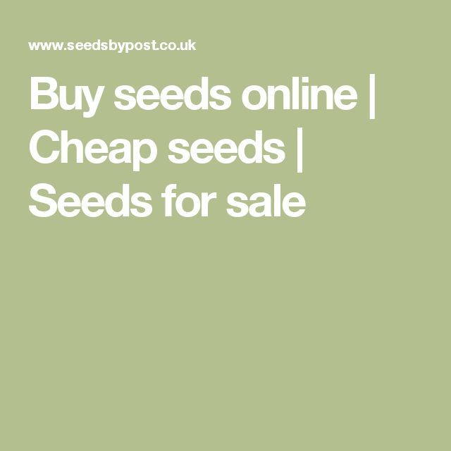Buy seeds online | Cheap seeds | Seeds for sale