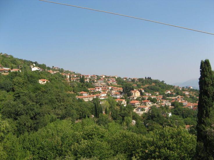 ΓΕΩΡΓΙΤΣΙ Photo from Georgitsi in Laconia | Greece.com