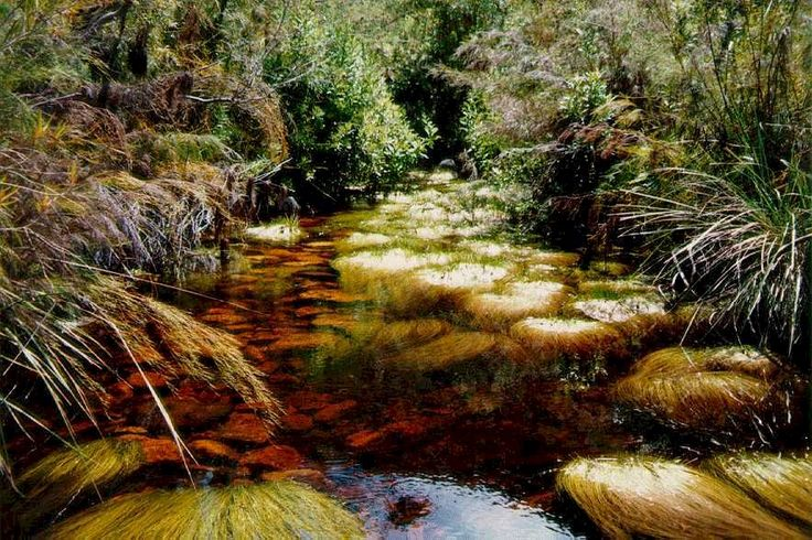 rivers of western cape - Google Search