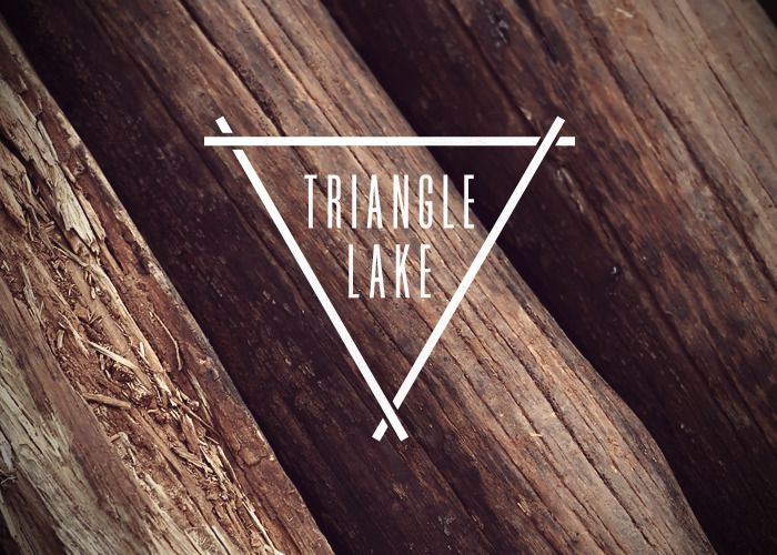 Triangle Lake by Nicole Meyer