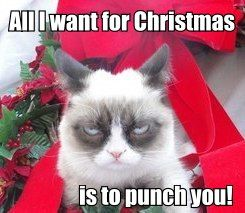 72 best Grumpy Cat Christmas images on Pinterest | Grumpy cat ...