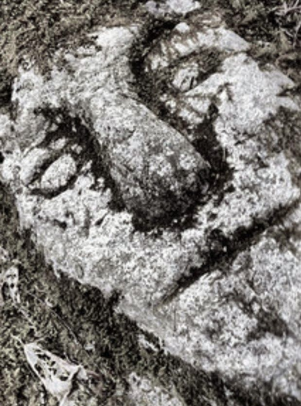 Celtic face carved into a West Virginia rock face.  The evidence continues to accumulate that the Ohio mound builders practiced the Celtic Druids religion.