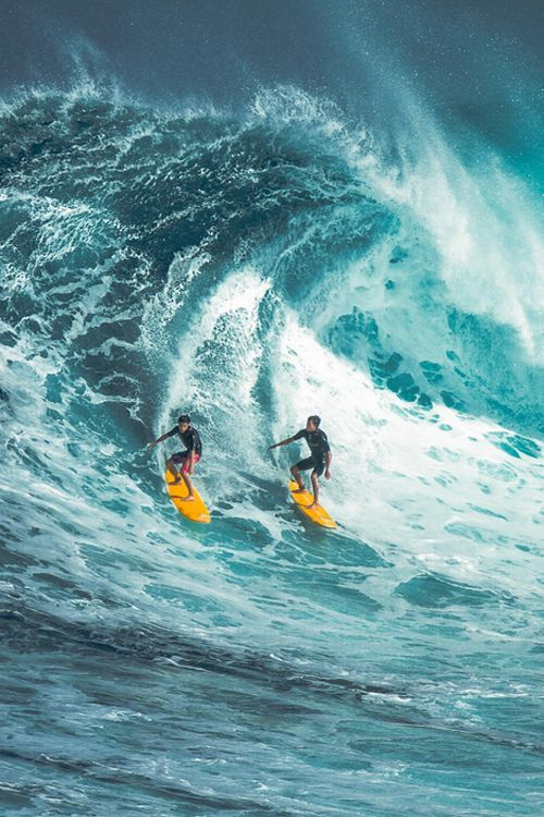 surfing jaws at peʻahi, maui | extreme sports + lifestyle photography #adventure
