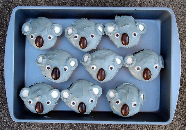 Koala Cupcakes!