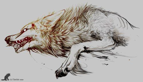 Desperate Wolf Tattoo Design