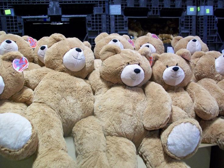 Big Hunka Love Bears waiting to be shipped to their new homes!