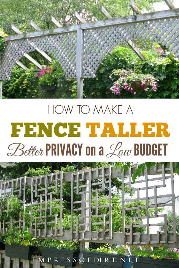 How To Make A Fence Taller For Better Privacy Fence Landscaping