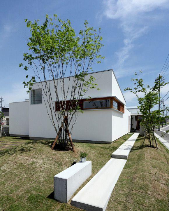 木製建具のコーナー窓が白い家のアクセント コンクリート製の