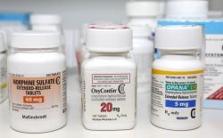In 2013, the more recent year for which data is available, 46,471 people in the United States died from drug overdoses, and more than half of those deaths were caused by prescription painkillers and heroin.