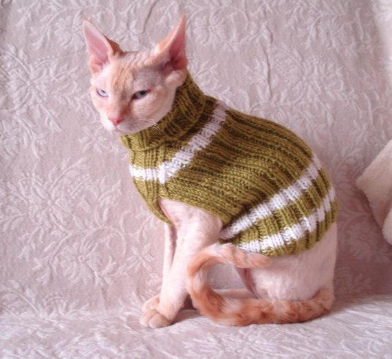 Top 25 ideas about Cat jumper / sweater on Pinterest | Cats, Warm ...