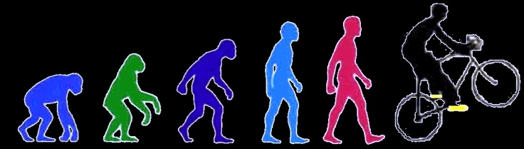 an analysis of the many ideas on the theory of evolution Explainer: theory of evolution  or laws developed over many years through  daily newsletter and get the latest analysis and commentary.