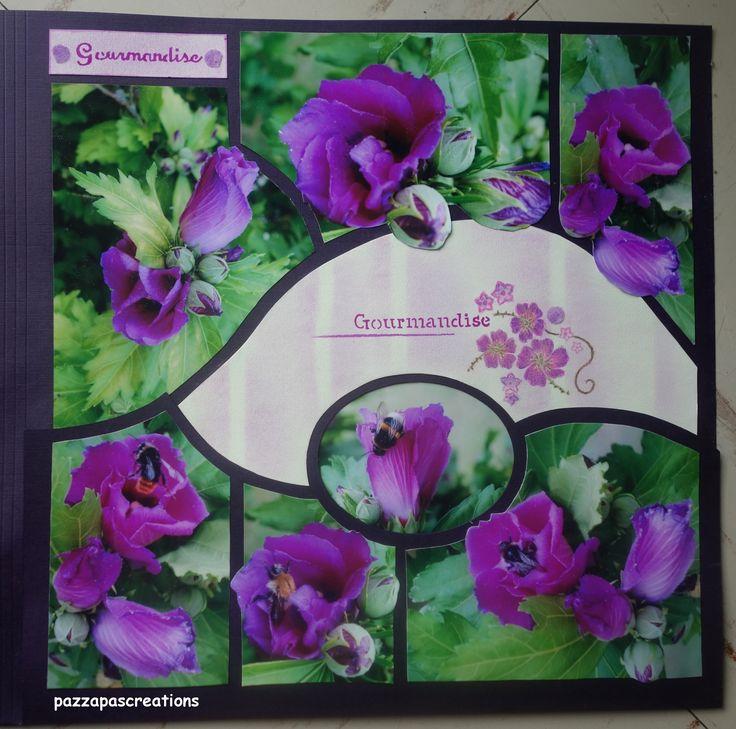 Hibiscus de mon jardin 2013
