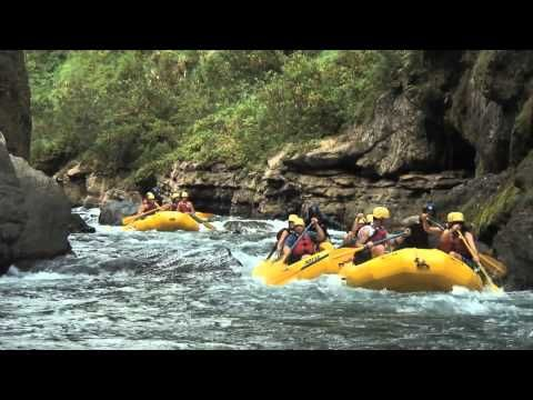 Rafting in FijiMeter High, Meter Apartments, Forty Meter, Emeralds Rainforests, Rivers, Beautiful Fiji, Point Bare, Narrow Canyon, Black Volcanic