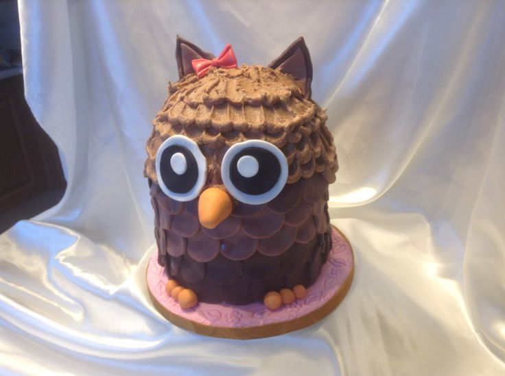 Chocolate Carmel owl cake