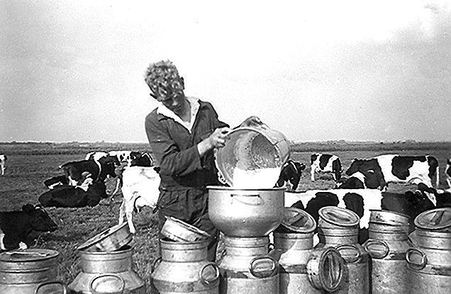 melk door de filter in de zeef schenken in de melkbus