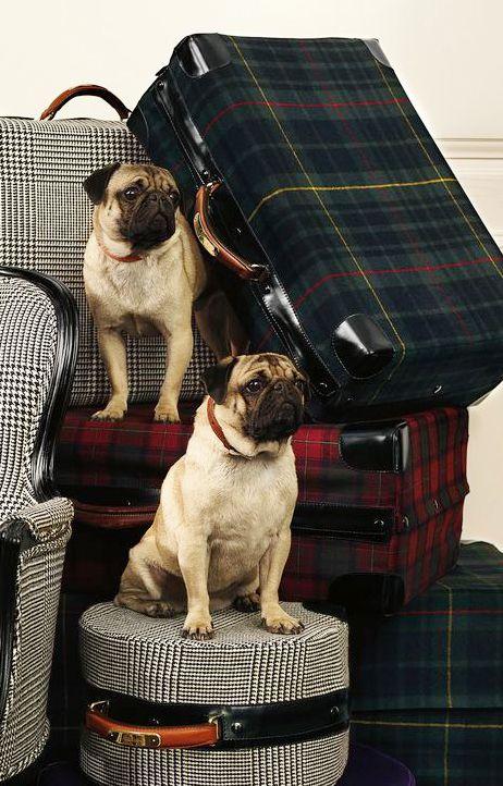 Ralph Lauren Tartan Luggage
