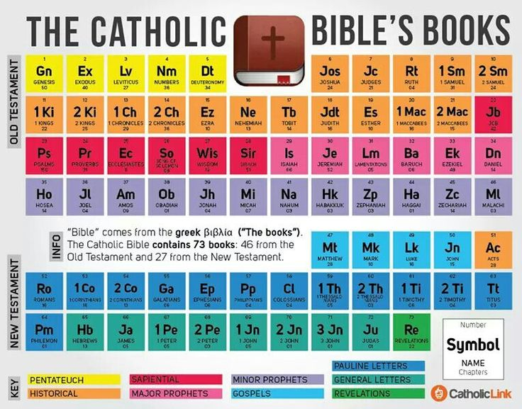 Books in Catholic Bible                                                                                                                                                                                 More