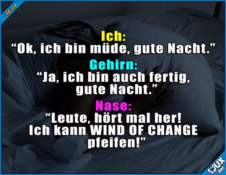 Immer dieses Pfeifen... x.x #Nase #schlaflos #Humor #Witze #lustigeSprüche #Statussprüche #lachen #Jodel Humor