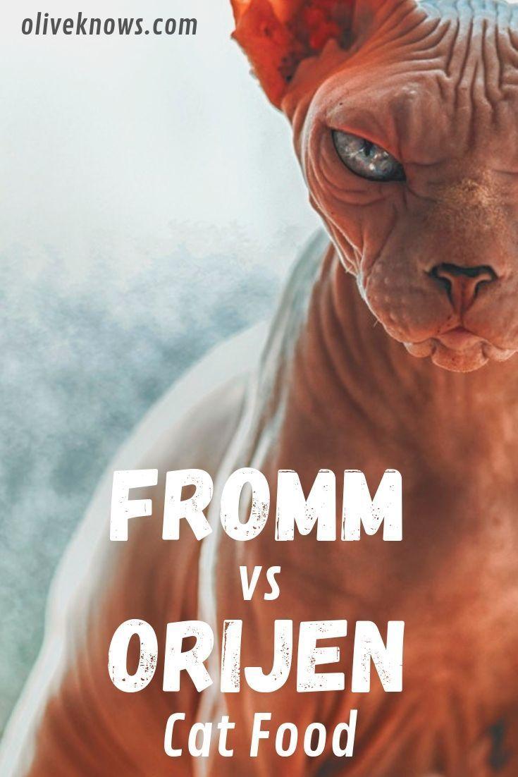 Fromm vs Orijen Katzenfutter: Entscheide dich jetzt. Meine ehrliche Wahl!