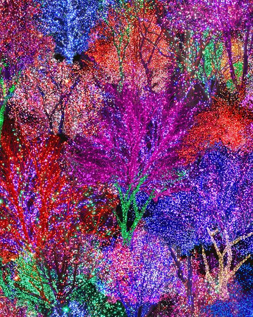 All Aglow - Christmas Light Forest - Multi - DIGITAL PRINT-Quilt Fabrics from www.eQuilter.com