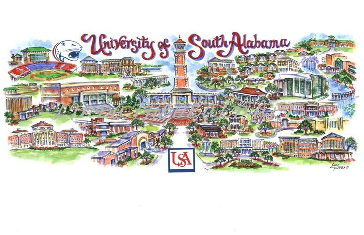 The University of South Alabama  Mobile's largest employer  Home of the Jaguars