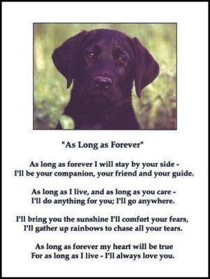 As long as forever....