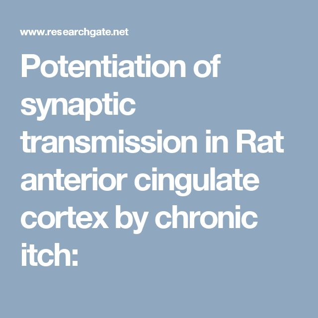Potentiation of synaptic transmission in Rat anterior cingulate cortex by chronic itch: