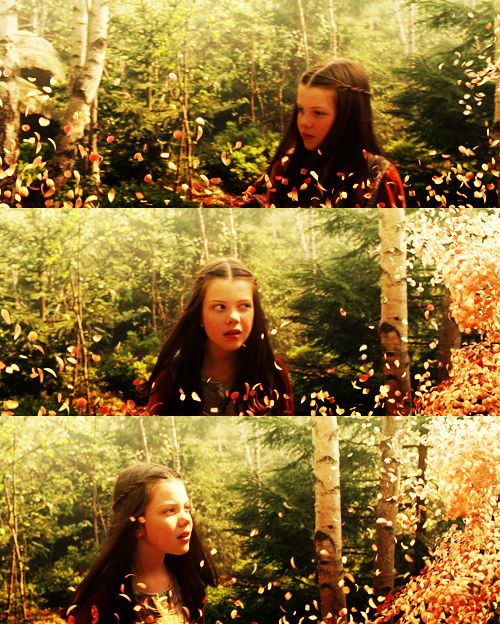 The Chronicles Of Narnia: Prince Caspian -- I hate how they turned this scene into a dream in the movie.