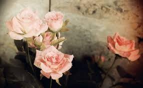 Puisi Kerinduan Pada Sang Kekasih Paling Puitis