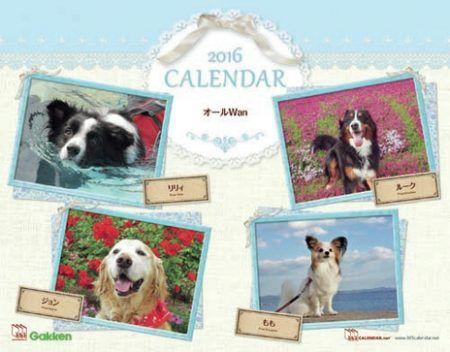 写真投稿・カレンダー制作サイト「365(サンロクゴ)カレンダー」が、2017年版カレンダーに掲載する犬や猫などのペットの写真エントリー受付を、2016年9月30日(金)で終了します。