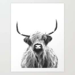 10191cabdf9 Black and White Highland Cow Portrait Art Print