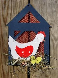 Kip in een hok. Het gaas is van een uiennetje (cf le filet à fruit en guise de grillage à poule !)