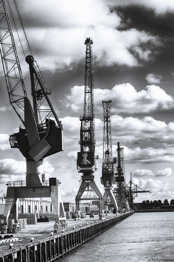 Rotterdam Port Shore Cranes