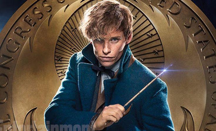 Animais Fantásticos e Onde Habitam | J.K. Rowling Anunciou 5 Novos Filmes