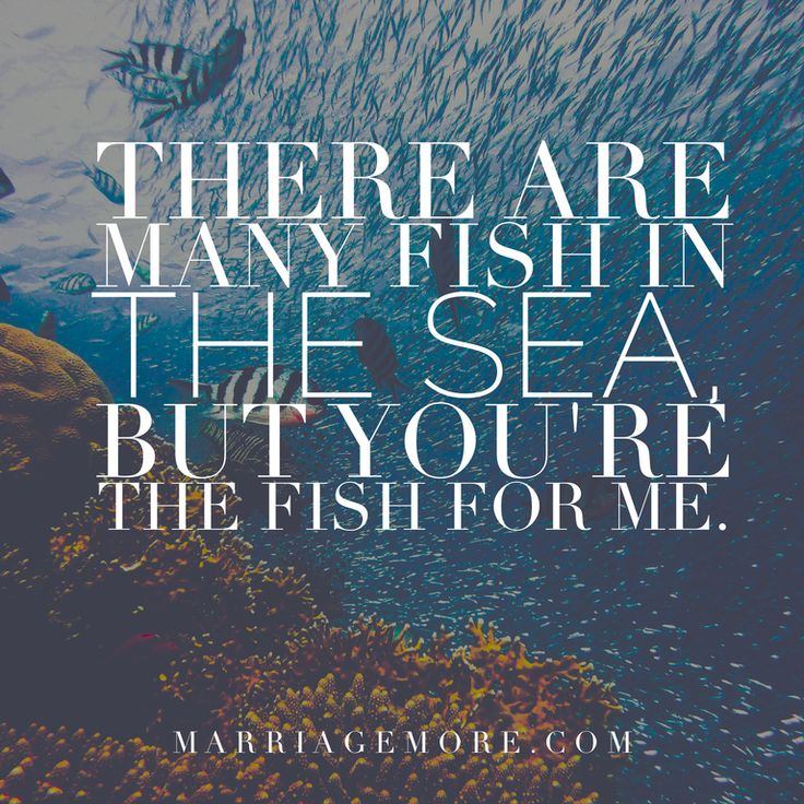 Fish Motivational Quotes: Best 25+ Sea Quotes Ideas On Pinterest